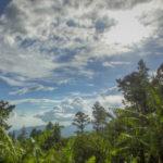 Jamaica's Skies